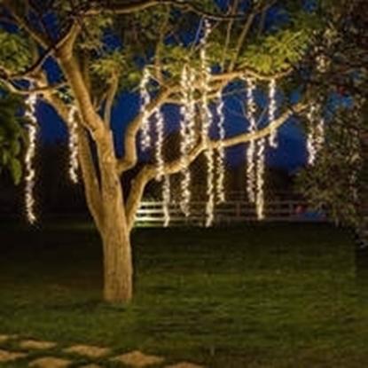 Imagens de Grinalda Luminosa Led Arvores